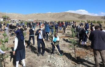 Erzincan'da 25 bin fidan toprakla buluştu