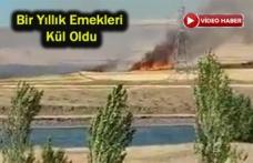 Tarım Arazisi Alevlere Teslim Oldu