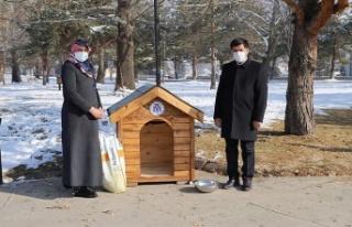 Erzincan Belediyesi'nden Sokak Hayvanlarına Kulübe
