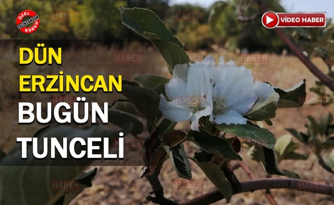 Önce Erzincan, Sonra Tunceli..