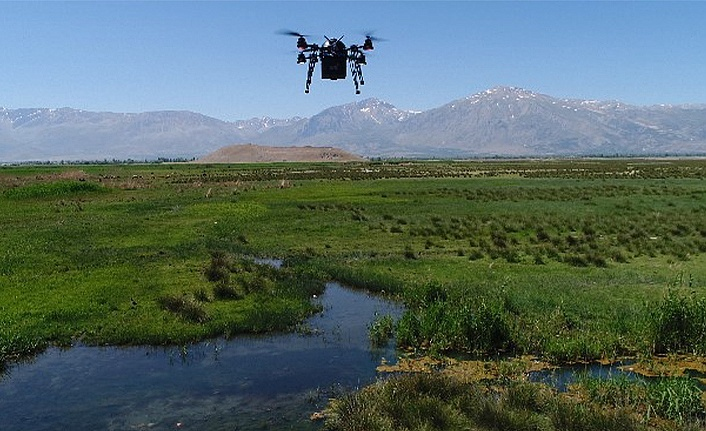 'Drone' ile ilaçlanıyor